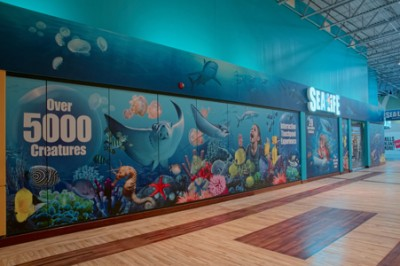 New sea life exhibit makes a splash rodgers builders Concord mills mall aquarium